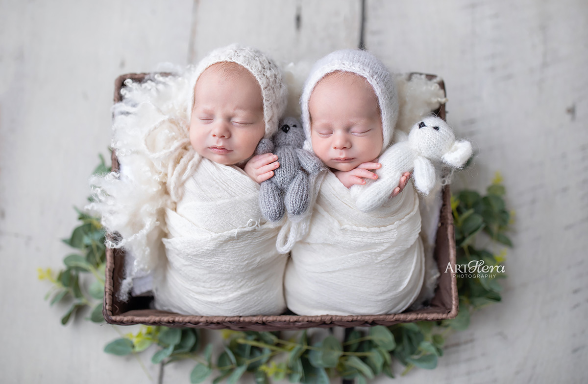 Langley Newborn Photography Twin